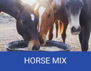 horse feed mt garnet