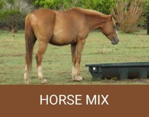 horse feed mixes