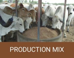 animal production mix
