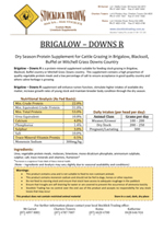 Brigalow Downs