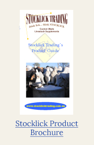 stocklick product brochure